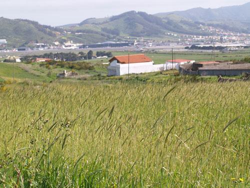 12 mundo rural municipios tenerife gevic gran for Oficina virtual medio rural